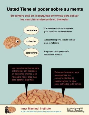 Ud tiene el poder sobre su mente INTRO 1