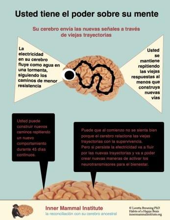Ud tiene el poder sobre su mente INTRO 3